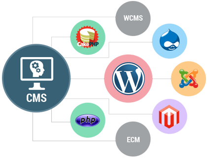 CMS Website Development Company in Hyderabad